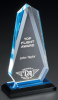 Acrylic Arrowhead Award Action Awards' Exclusive!