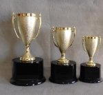 Traditional Trophy Cups *Always in Stock/Most popular